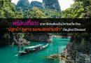 """พร้อมเที่ยว! ราคาพิเศษต้อนรับนักท่องเที่ยวไทย """"ปลูกป่า ดูดาว ชมหมอกยามเช้า"""" ที่อนุรักษ์ อีโคลอดจ์"""